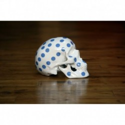 Skull Polka Dot B by NooN