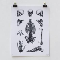 Bones Plate by LOUIS LPS