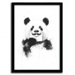 FUNNY PANDA by BALAZS SOLTI