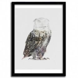 Affiche ARCTIC OWL par ANDREAS LIE