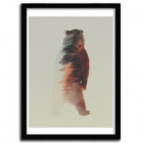 Affiche STANDING BEAR par ANDREAS LIE