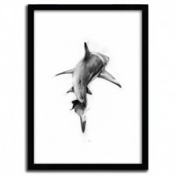 Affiche SHARK II par ALEXIS MARCOU