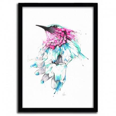 Affiche HUMMINGBIRD par ALEXIS MARCOU
