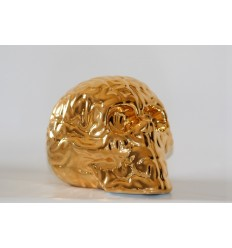 Skull Brain 'GOLD' by Emilio Garcia