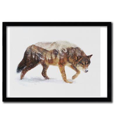 Affiche ARCTIC WOLF par ANDREAS LIE