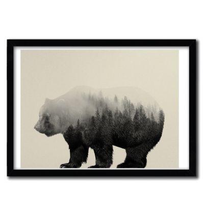Affiche bear in the mist par ANDREAS LIE