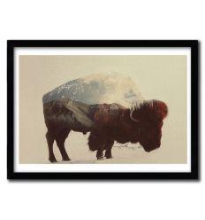 Affiche Buffalo par ANDREAS LIE