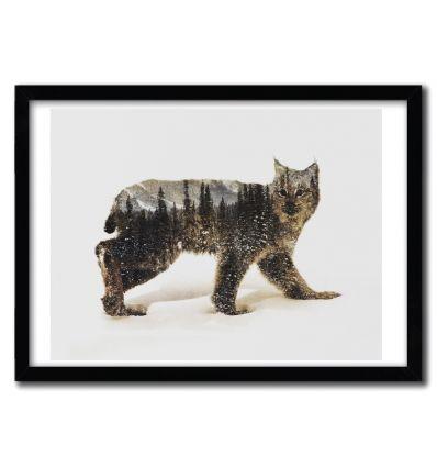 Affiche Arctic Lynx Bear par ANDREAS LIE