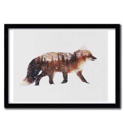 Affiche Arctic Red Fox par ANDREAS LIE