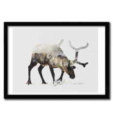 Affiche Arctic Reindeer par ANDREAS LIE