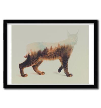 Affiche Norwegian Woods The Lynx par ANDREAS LIE