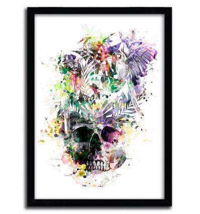 Affiche Skull Parrots par Riza Pekler