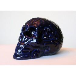 Skull BRain 'Bleu de Four' by Emilio Garcia