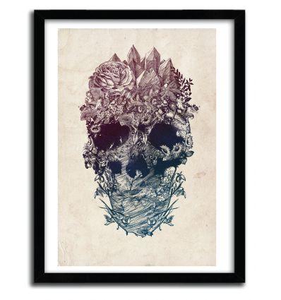 Affiche skull floral 3 par ALI GULEC