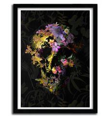 Affiche spring skull par ALI GULEC