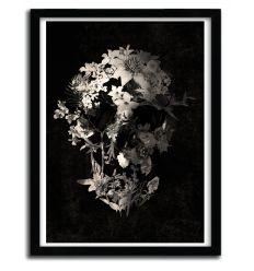 Affiche spring skull mono par ALI GULEC