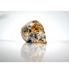 Skull Gold by NooN