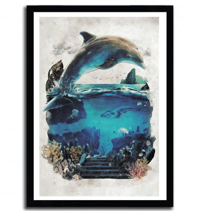 Affiche ecco the dolphin par Barrett Biggers
