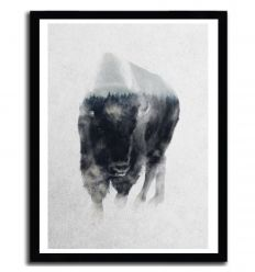 Affiche bison in mist decay par ANDREAS LIE