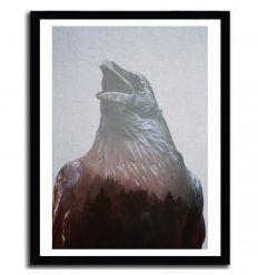 Affiche Corvus par ANDREAS LIE