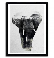 Affiche elefanten par ANDREAS LIE