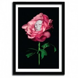 Affiche REBEL ROSE by Shifty