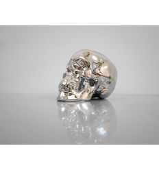 Skull Chrome by NooN