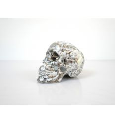 Skull Platinum B. by NooN