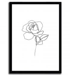 Rose line drawing by ELINA BLEKTE