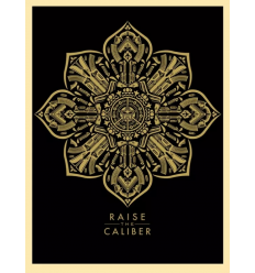 Print RAISE THE CALIBER by SHEPARD FAIREY alias OBEY