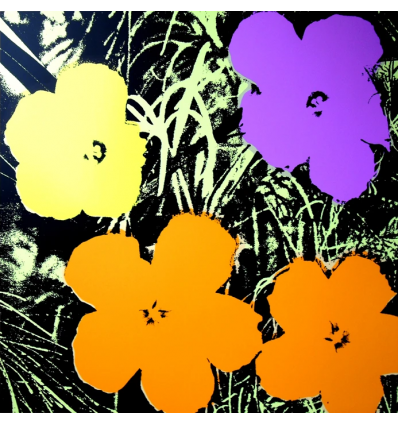 Print Flowers 11.66 by Andy Warhol