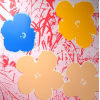 Print Flowers 11.70 by Andy Warhol