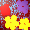 Print Flowers 11.71 by Andy Warhol