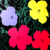 Print Flowers 11.73 by Andy Warhol