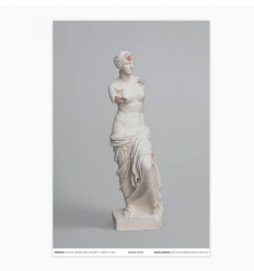 Print Rose quartz eroded Venus of Milo poster by DANIEL ARSHAM