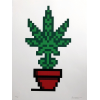 Print Hollyweed Red Pot by Invader