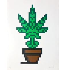 Print Hollyweed Brown Pot by Invader