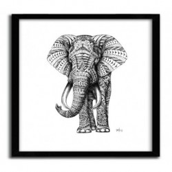 Affiche ORNATE ELEPHANT BY BIOWORKZ