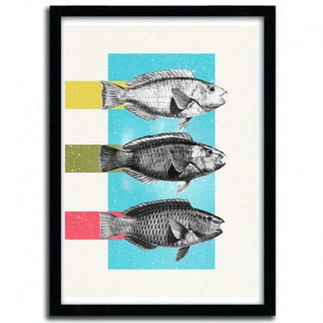 Affiche FISHES by DANNY IVAN