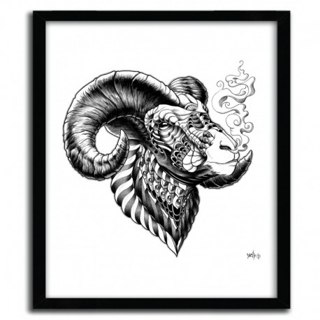 BIGHORN SHEEP BY BIOWORKZ
